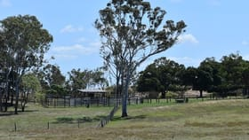 Rural / Farming commercial property for sale at 733 Maloney Road Thoopara QLD 4800