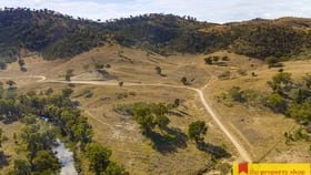Rural / Farming commercial property for sale at 3496 Yarrabin Road Mudgee NSW 2850