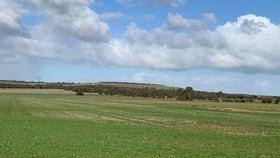 Rural / Farming commercial property for sale at 8 East Terrace Callington SA 5254