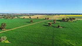 Rural / Farming commercial property for sale at 26R Godwins Road Dubbo NSW 2830