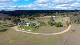 Rural / Farming commercial property for sale at Llandillo/709 Pattersons Road Emmaville NSW 2371