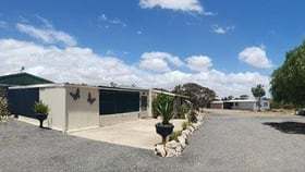 Rural / Farming commercial property for sale at 270 Westbrook Road Tailem Bend SA 5260
