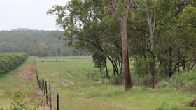 Rural / Farming commercial property for sale at 585 Miles Road Batchelor NT 0845