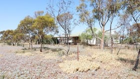 Rural / Farming commercial property for sale at 318 Arbuckle Road Dalwallinu WA 6609