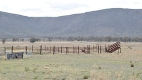 Rural / Farming commercial property for sale at 2380 Adelargo Road Grenfell NSW 2810