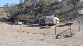 Rural / Farming commercial property for sale at 793 Gulf Rd Emmaville NSW 2371
