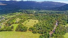 Rural / Farming commercial property for sale at 150 Ellis Road Bellenden Ker QLD 4871