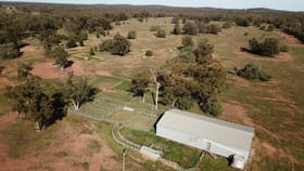 Rural / Farming commercial property for sale at 'Wyona Aggregation' Tottenham NSW 2873