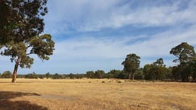 Rural / Farming commercial property for sale at McAlinden Rosewood Rd Boyup Brook WA 6244