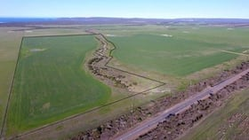 Rural / Farming commercial property for sale at . Bremer Bay Borden Road Bremer Bay WA 6338