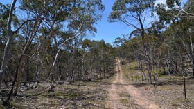 Rural / Farming commercial property for sale at Lot 43, 76 off Wattlemount Road/Pinnacle Fire Trail Road Portland NSW 2847