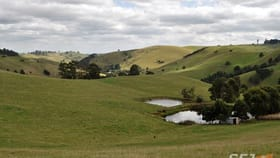 Rural / Farming commercial property for sale at 135 Waterfall Road Poowong East VIC 3988