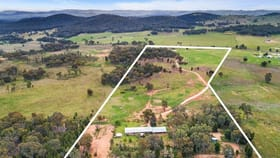 Rural / Farming commercial property for sale at 592 Blacksprings Road Mudgee NSW 2850