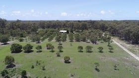 Rural / Farming commercial property for sale at 650 Fernfield Road Deepwater QLD 4674