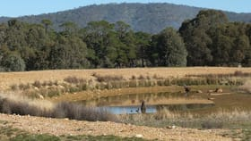 Rural / Farming commercial property for sale at Lot 2 Sunraysia Highway Redbank VIC 3477