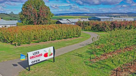 Rural / Farming commercial property for sale at 161 John Lees Drive Dilston TAS 7252
