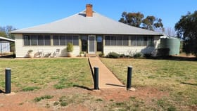 Rural / Farming commercial property for sale at 698 Driftway Road Grenfell NSW 2810