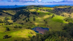 Rural / Farming commercial property for sale at 942 Maleny Stanley River Road Booroobin QLD 4552