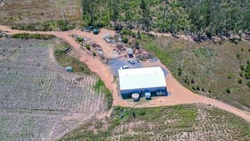 Rural / Farming commercial property for sale at 1594-1596 Old Byfield Road Lake Mary QLD 4703