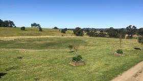 Rural / Farming commercial property for sale at 96 Khatabundah Road Wingham NSW 2429