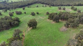 Rural / Farming commercial property for sale at Lot 8474 Da Ronchs Road North Greenbushes WA 6254