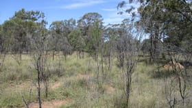Rural / Farming commercial property for sale at Lot 32 Tolmah Court Tara QLD 4421