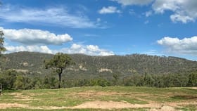 Rural / Farming commercial property for sale at 1648 Bunnan Road Scone NSW 2337