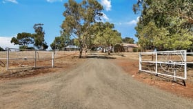 Rural / Farming commercial property for sale at 52 Old Anlaby Road Allendale North SA 5373
