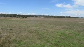 Rural / Farming commercial property for sale at Lot 1, 33 Allan Creek Road Gleneagle QLD 4285