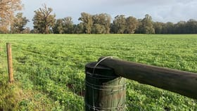 Rural / Farming commercial property for sale at Lots 209, 210 Mallokup Road Stirling Estate WA 6271