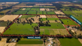 Rural / Farming commercial property for sale at 656 Madill Road Undera VIC 3629