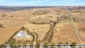 Rural / Farming commercial property for sale at 2919 Reedy Creek Road Palmer SA 5237