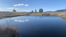 Rural / Farming commercial property for sale at Lot 39/686 Queens Pinch Road Mudgee NSW 2850