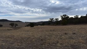 Rural / Farming commercial property for sale at 2420 Nangar Road Eugowra NSW 2806
