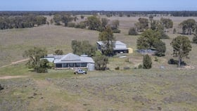Rural / Farming commercial property for sale at 651 WANGMANS ROAD Baradine NSW 2396