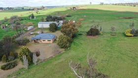 Rural / Farming commercial property for sale at 1585 STURT HIGHWAY Borambola NSW 2650
