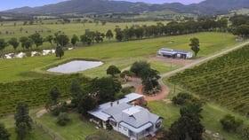 Rural / Farming commercial property for sale at 536 De Beyer's Road Pokolbin NSW 2320