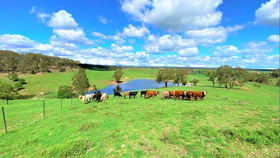 Rural / Farming commercial property for sale at 293 Fisher Road Bungonia NSW 2580