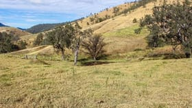 Rural / Farming commercial property for sale at 2241 Curricabark  Road Gloucester NSW 2422