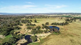 Rural / Farming commercial property for sale at 7368 Burrendong Way Wellington NSW 2820