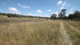 Rural / Farming commercial property for sale at 450 CAINBIL ROAD Uarbry NSW 2329