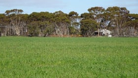Rural / Farming commercial property for sale at Lot 9790 Neve Road Pingrup WA 6343