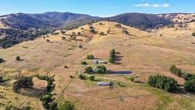 Rural / Farming commercial property for sale at 301 Egan Lane Sandy Creek VIC 3695