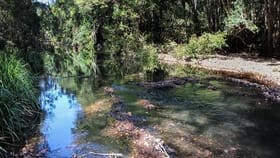 Rural / Farming commercial property for sale at 1518 Terreel Road Gloucester NSW 2422