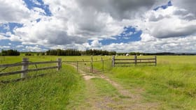 Rural / Farming commercial property for sale at 3, 52 Fleming Street Nulkaba NSW 2325