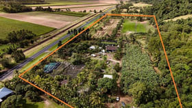 Rural / Farming commercial property for sale at 68787 Bruce Highway Deeral QLD 4871