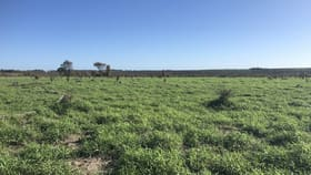 Rural / Farming commercial property for sale at 1551 Mt Owen Road Mitchell QLD 4465