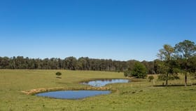 Rural / Farming commercial property for sale at Tullymorgan Road Tullymorgan NSW 2463