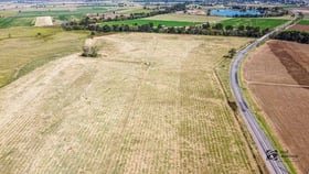 Rural / Farming commercial property for sale at 2179 Denman Road Muswellbrook NSW 2333