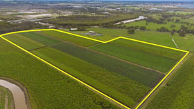 Rural / Farming commercial property for sale at 55 Pimlico Road Pimlico NSW 2478